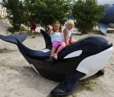park-wieloryba